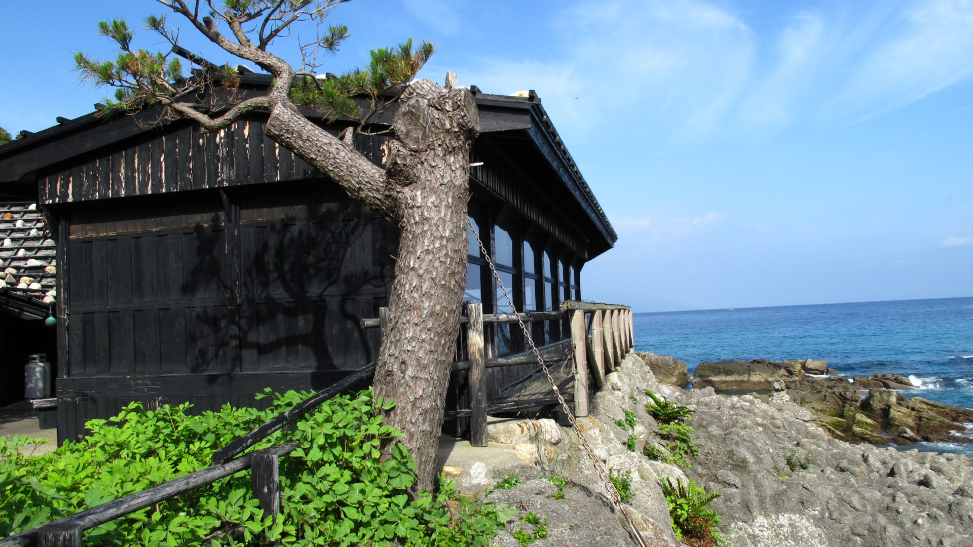 屋久島 送陽邸