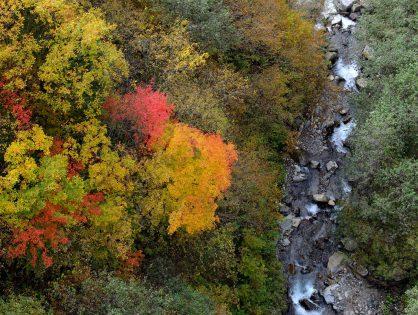 奥飛騨の秋