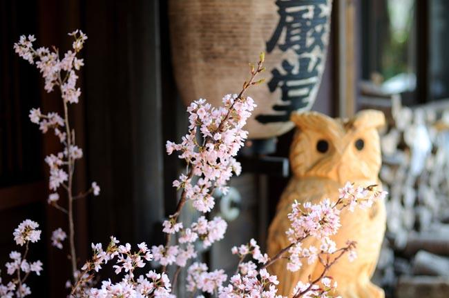 ぬる湯で瞑想。栃尾又温泉 宝巖堂へいってきました。